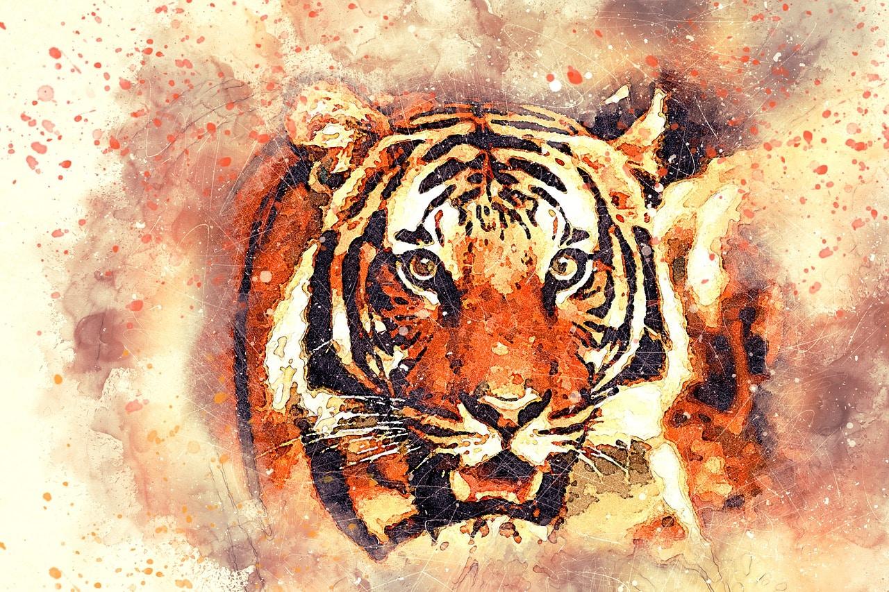 Portrait du signe astrologique chinois Tigre