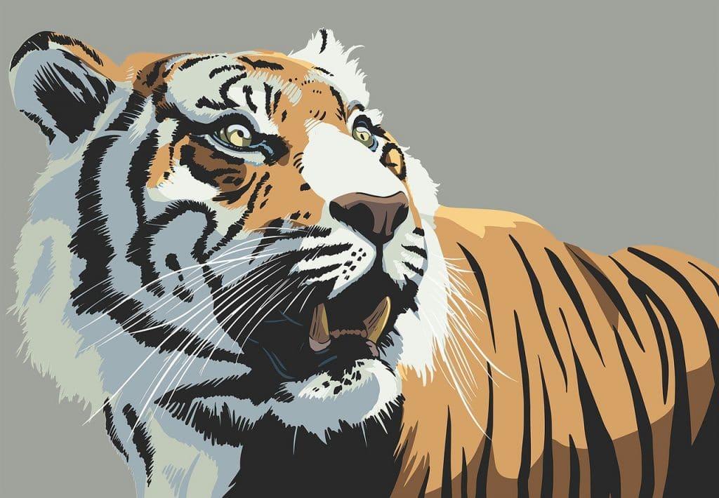 La personnalité du tigre